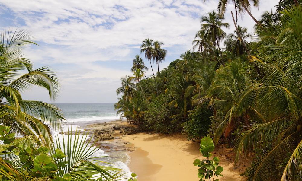 Èrintetlen karib tengerpart - Manzanillo nemzeti park, Costa Rica