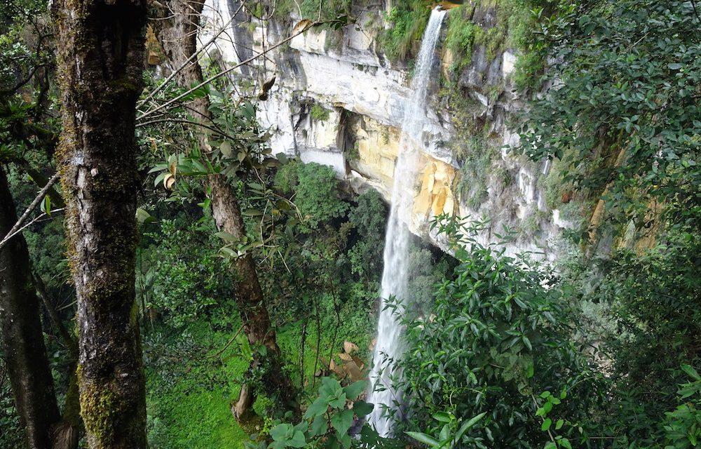 Gocta und Yumbilla, zwei Urwald-Wasserfall-Perlen in Chachapoyas