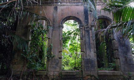 Teherhajóval Amazóniában: Novo Airão és Velho Airão