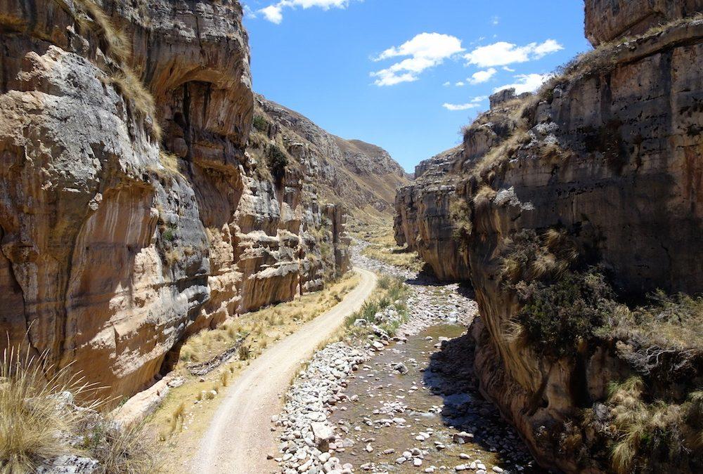 Der Bromelienwald des Schutzgebiets Nor Yauyos-Cochas und der Shucto-Canyon
