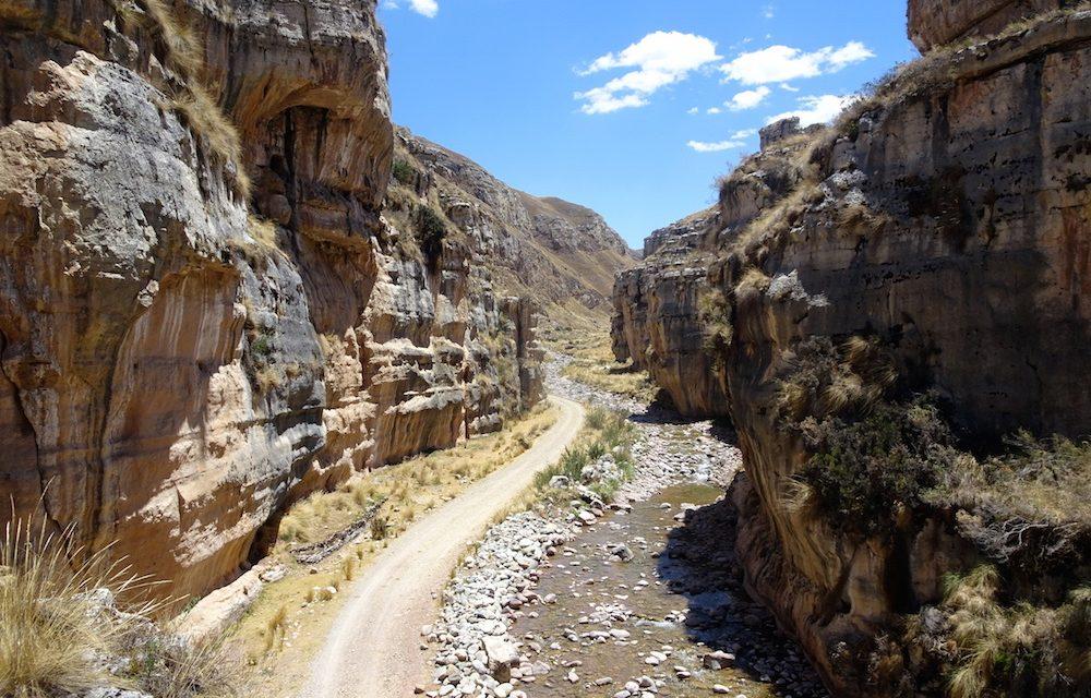 A Nor Yauyos-Cochas havasi broméliái és a Shucto-kanyon