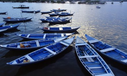 Per Frachtschiff über den Amazonas: Alter do Chão und seine Umgebung