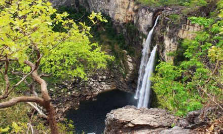 Chapada dos Veadeiros: Die Rio Preto-Wasserfälle