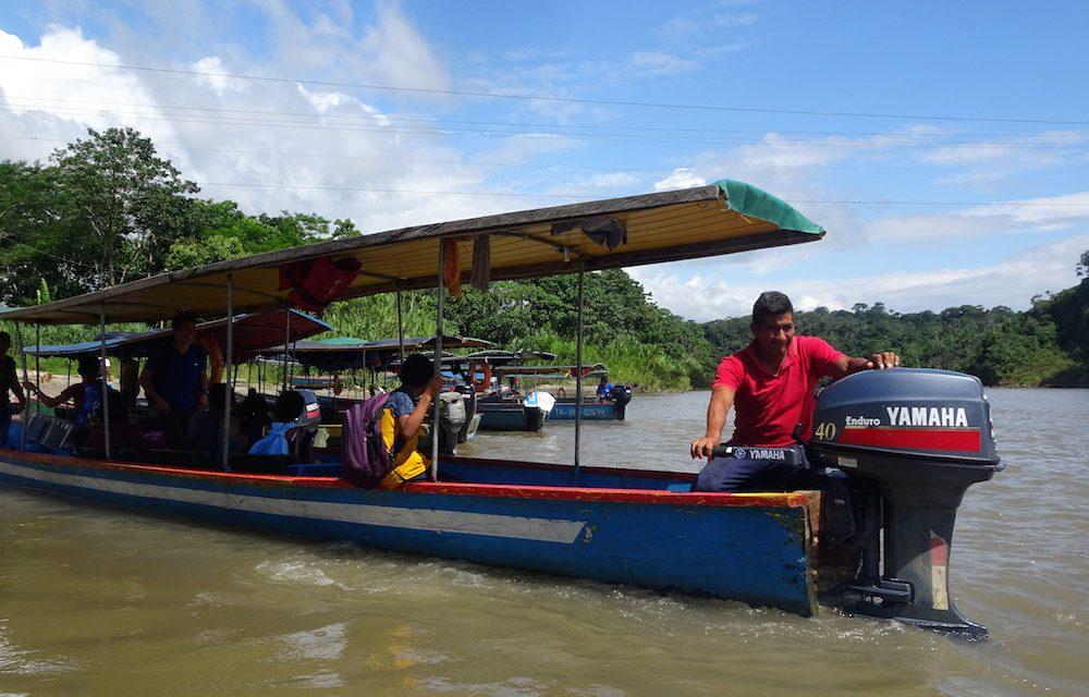 Im ecuadorianischen Dschungel: Tena und seine faszinierende Umgebung