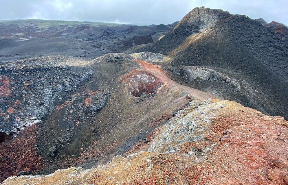 Die Galápagos-Inseln: die Insel Isabela (Bildbericht)