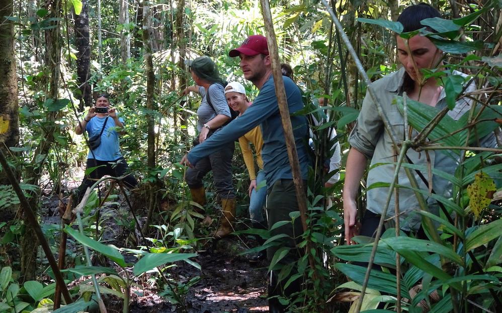 Im ecuadorianischen Dschungel: das Wildtier-Reservat Cuyabeno