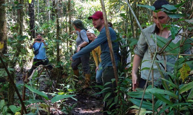 Az ecuadori dzsungelben: a Cuyabeno Természetvédelmi Terület