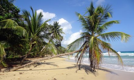Die Perlen der Karibik: Bocas del Toro